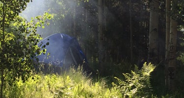 Camp May