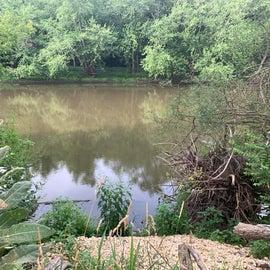 river behind site 45