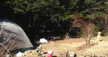 Black Balsam Knob - Dispersed Camping