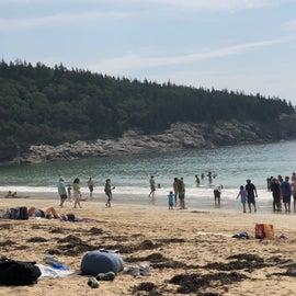 The sandy beach at Acadia
