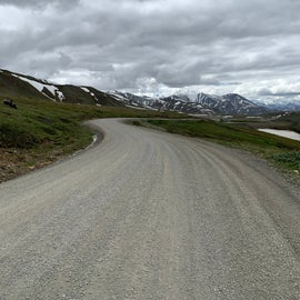 Bus Road to Campsite