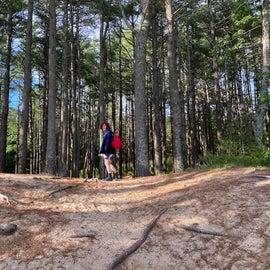 Cliff Pond trail