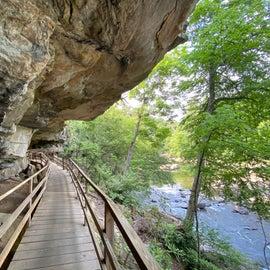 Alum Cave Trail- part of the park