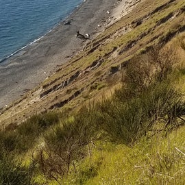 Beach at Fort Ebey