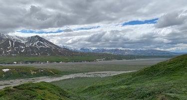 Savage River Campground - Denali National Park