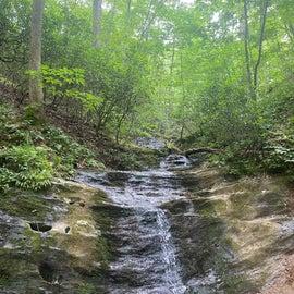small waterfall off trail