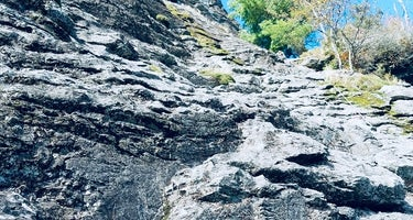 Table Rock Campsites (Linville Gorge Wilderness)