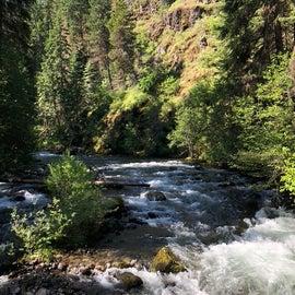Bear Creek runs through the campground