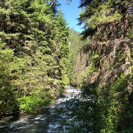 Bear Creek at Boundary Campground in Wallowa-Whitman National Forest