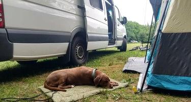 Hadleys Point Campground
