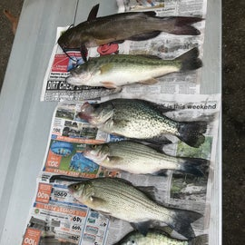 Did a little crappie and bass fishing while we were there.