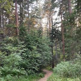 Nice hiking trail