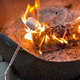 Roasting marshmallows at fire pit