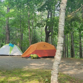 Typical tent site.
