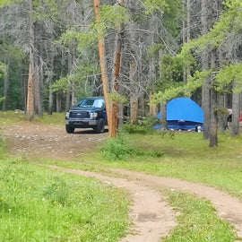 Dispersed camp area before actual campground sith standard sites