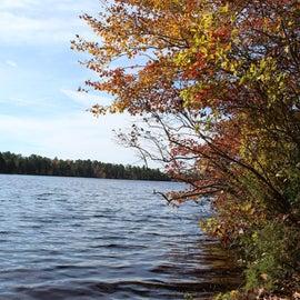 Lake Atsion from back porch