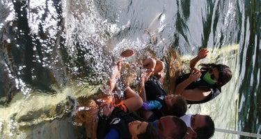 Key Largo Kampground & Marina