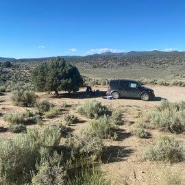 dispersed camping area