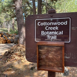 A trail can be found at one end of the campground. About 10 markers highlight botanical references, but no guides were available. The trail is about 1/2 mile round trip, following the creek. An offshoot leader 3/4 up hill to a lookout.