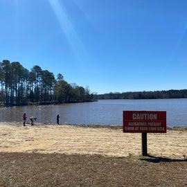 Beach area adjacent to campground