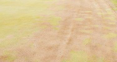 Hickory Ridge Golf & RV Resort
