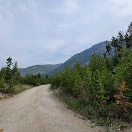 Moraine Campground road