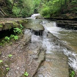 Up the creek a bit