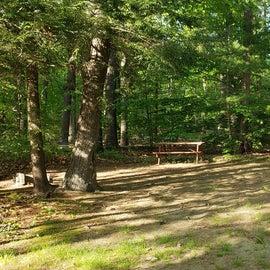 Tidewater Campground Site 14L