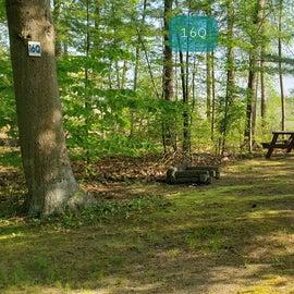 Tidewater Campground Site 16Q