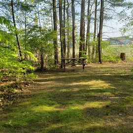 Tidewater Campground Site 16R