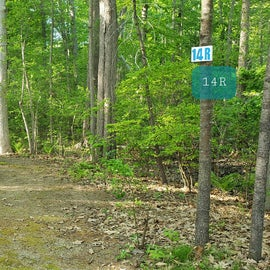 Tidewater Campground Site 14R