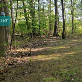 Tidewater Campground Site 16T