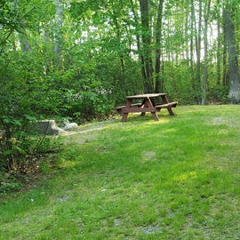 Tidewater Campground Site D11