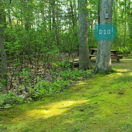 Tidewater Campground Site D10