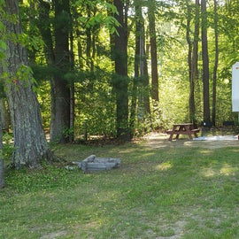 Tidewater Campground Site 81