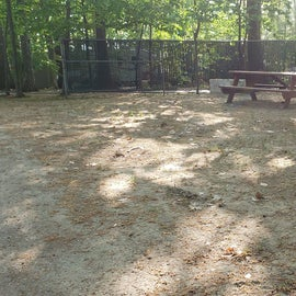 Tidewater Campground Site 16B