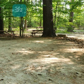 Tidewater Campground Site D2
