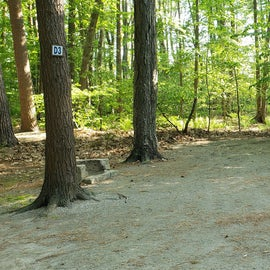 Tidewater Campground Site D3