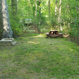 Tidewater Campground Site C8