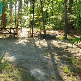Tidewater Campground Site D8