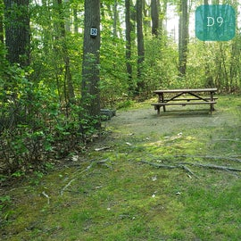 Tidewater Campground Site D9