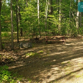 Tidewater Campground Site 14O