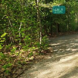 Tidewater Campground Site 14N