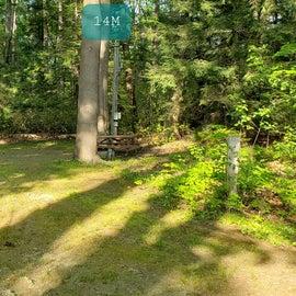 Tidewater Campground Site 14M