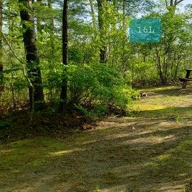 Tidewater Campground Site 16L