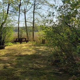 Tidewater Campground Site 16K