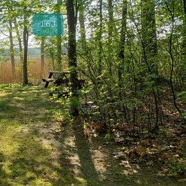 Tidewater Campground Site 16J