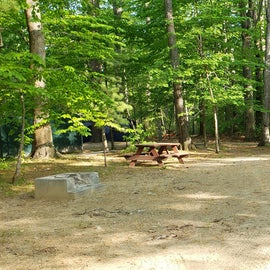 Tidewater Campground Site 50