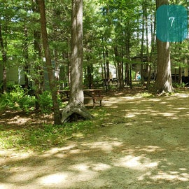 Tidewater Campground Site 7