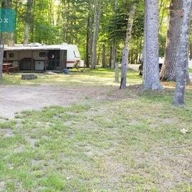 Tidewater Campground Site fox